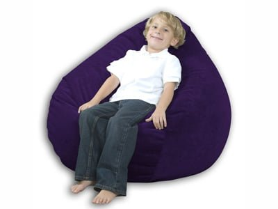 Youth-Size Bean Bag Chair